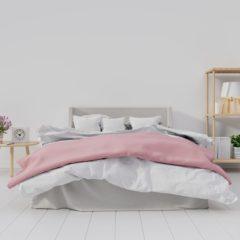 Les solutions pour éradiquer les punaises de lit